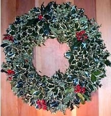 "16"" White Holly Wreath"