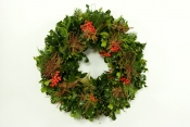 Holly & Andromeda Wreath