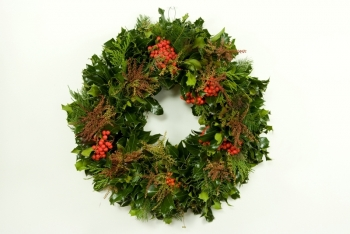 Holly & Andromeda Wreath