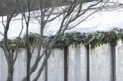 6ft Holly & Fir Garland