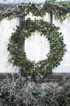 "36"" Holly & Fir Wreath"